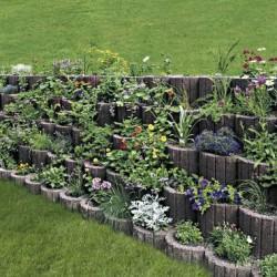 Mini növényedény