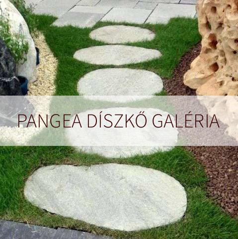 Pangea díszkövek, kertisziklák